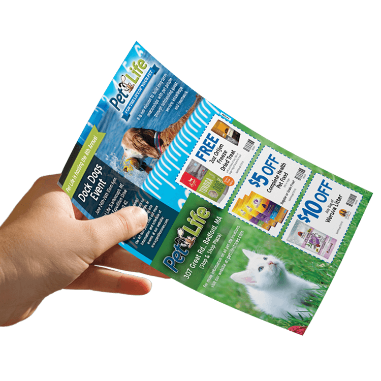 Pet Life direct mail marketing plan in hand
